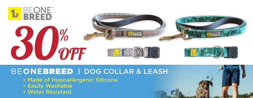Beonebreed dog collar and leash Promotion